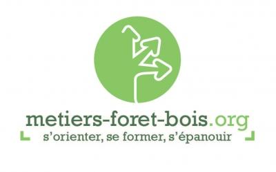 formation-foret-bois